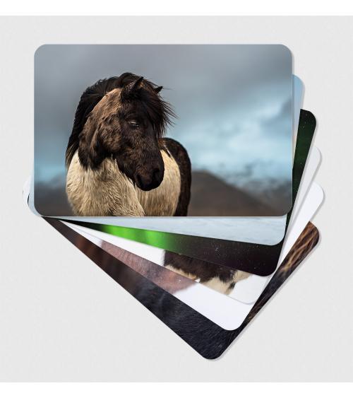 Tirages d'art chevaux islandais