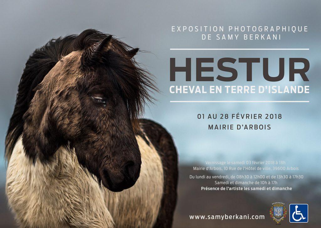 Hestur, cheval Islandais, Mairie d'Arbois