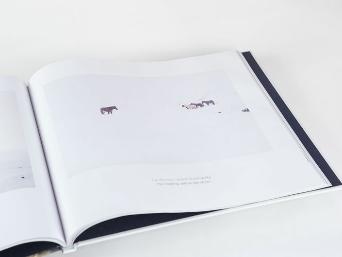 Photo book Hestur, Horse in Iceland