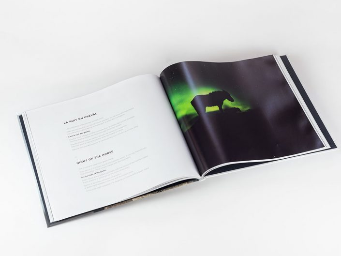 Photo book Hestur, Horse in Iceland
